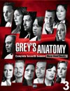 Grey's Anatomy - Saison 7 : DVD 3 à voir en streaming VoD - HollyStar Suisse